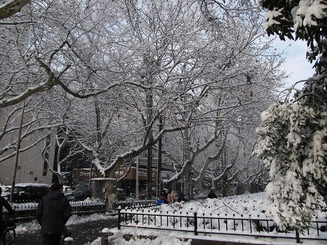 20130219_snow2-s.jpg