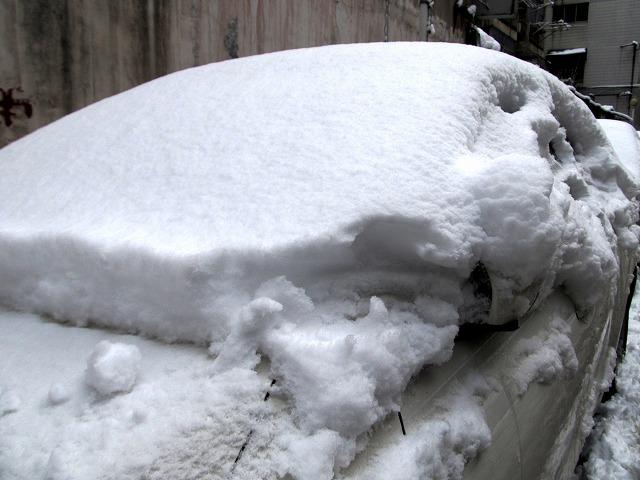 20130219_snow1-s.jpg